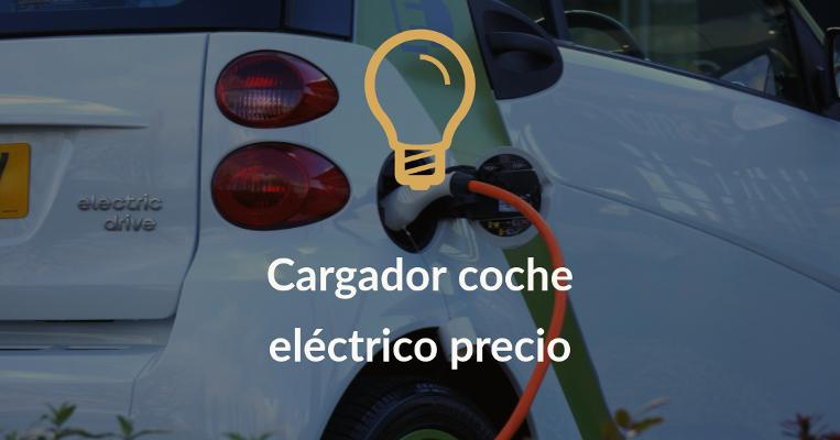 cargador coche electrico precio